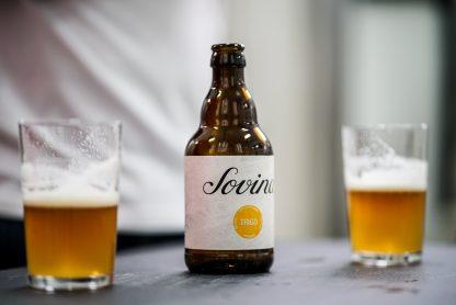 Cerveja Artesanal Sovina Trigo 33cl